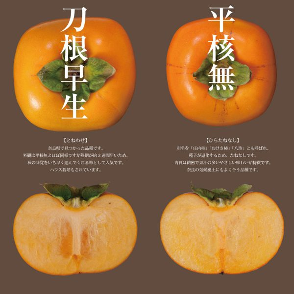 五條柿ブランディング