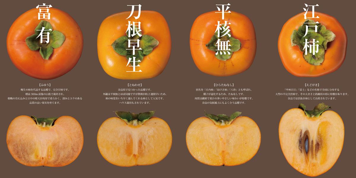 五条市柿グランディング タペストリー